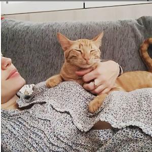 bebé y gatos en casa